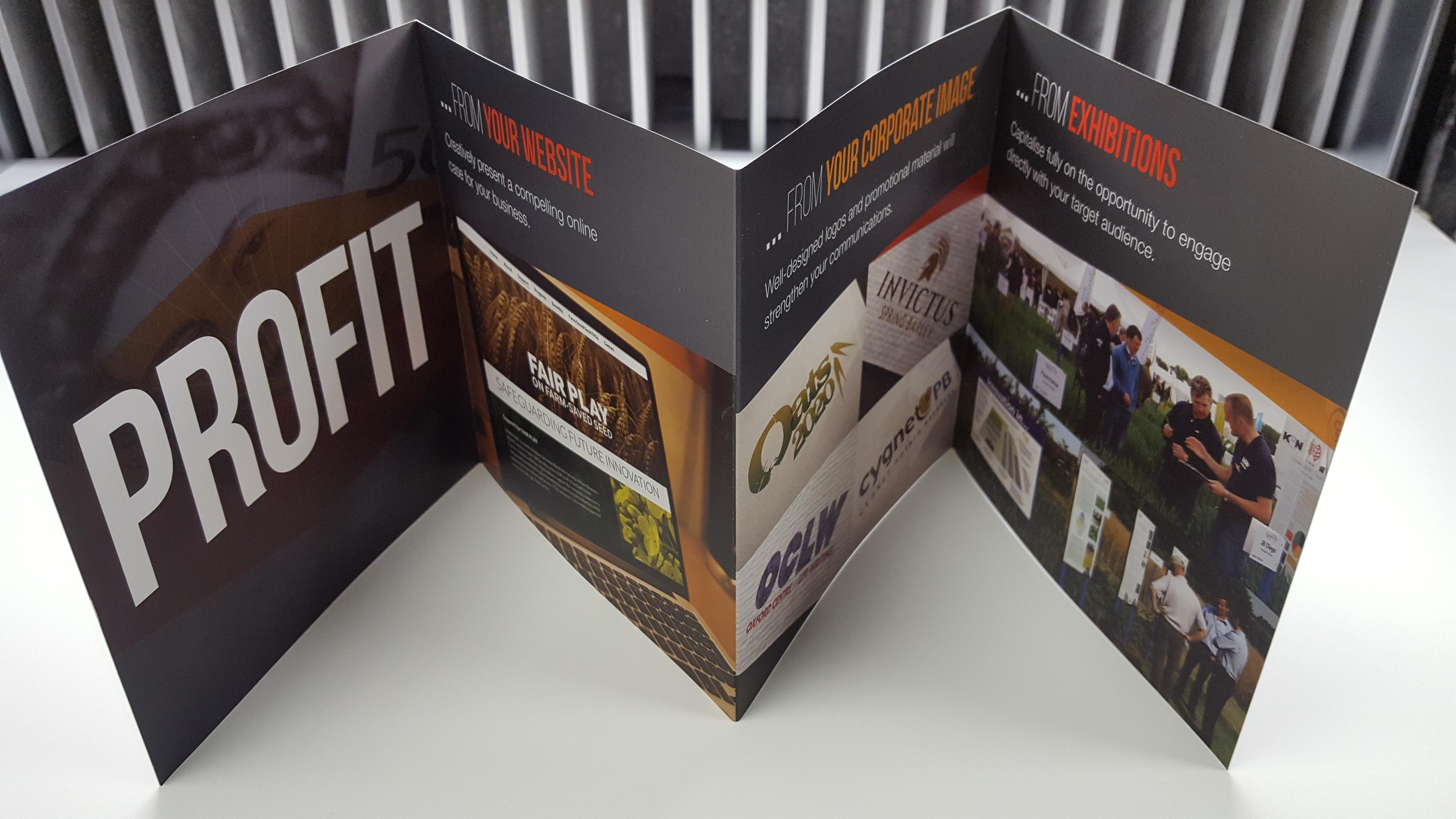 Flyers & Leaflets