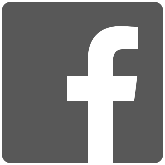 logo facebook grey